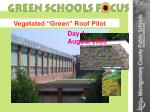 vegetated green roof pilot1