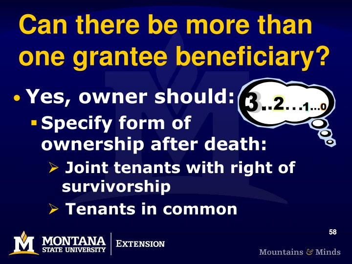 Can there be more than one grantee beneficiary?