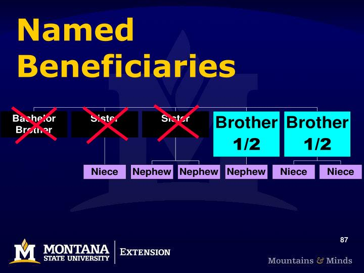 Named Beneficiaries