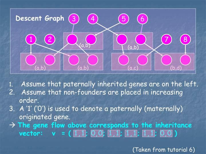 Descent Graph
