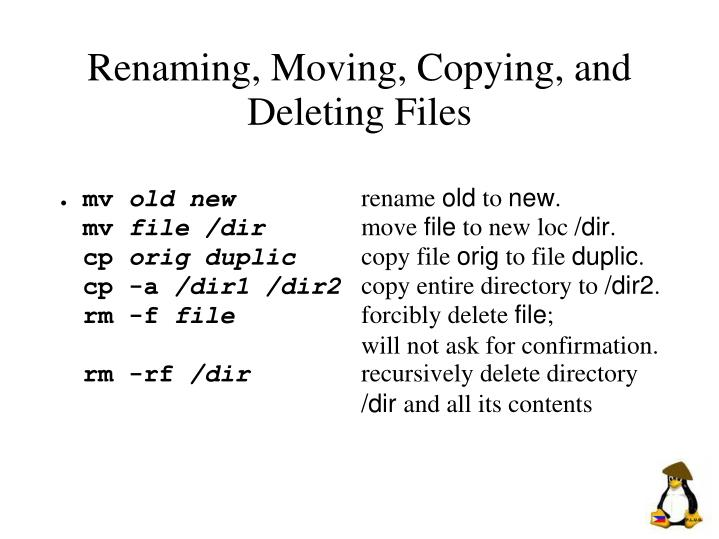 Renaming, Moving, Copying, and Deleting Files