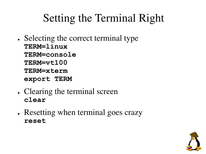 Setting the Terminal Right