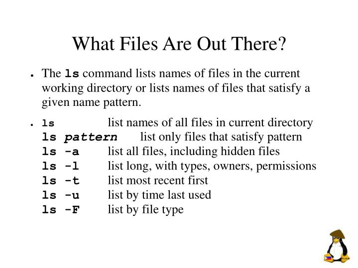 What Files Are Out There?