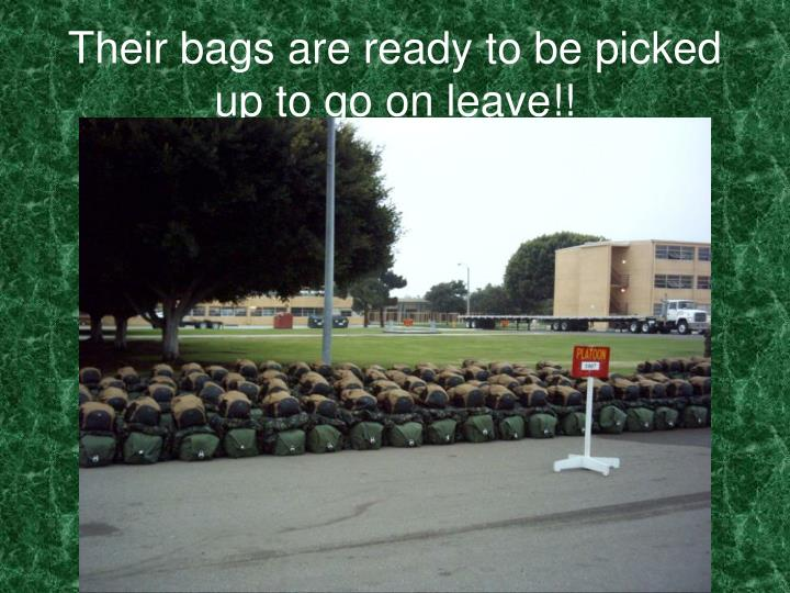 Their bags are ready to be picked up to go on leave