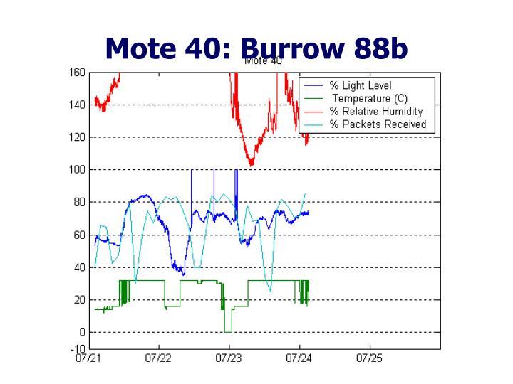 Mote 40: Burrow 88b