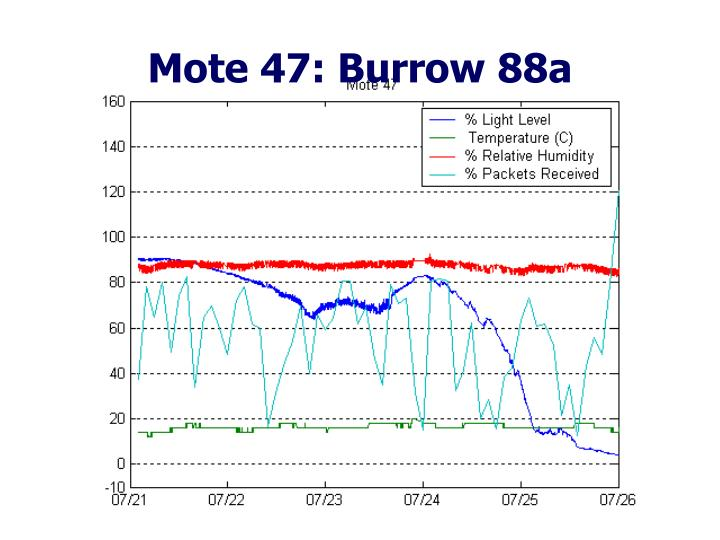 Mote 47: Burrow 88a