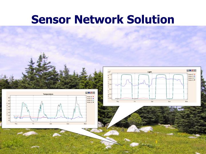 Sensor Network Solution