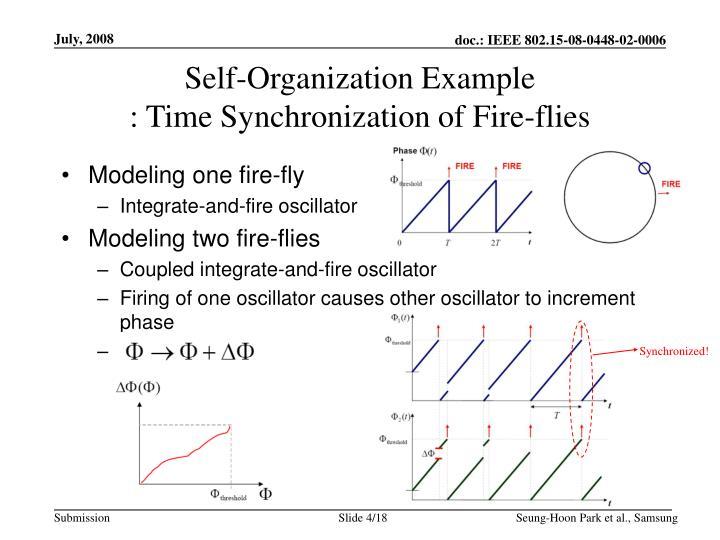 Self-Organization Example