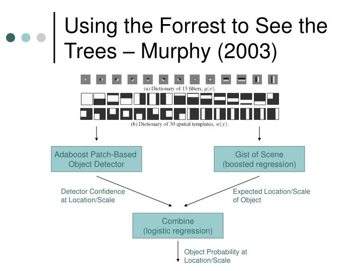Using the Forrest to See the Trees – Murphy (2003)