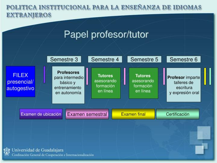 Papel profesor/tutor