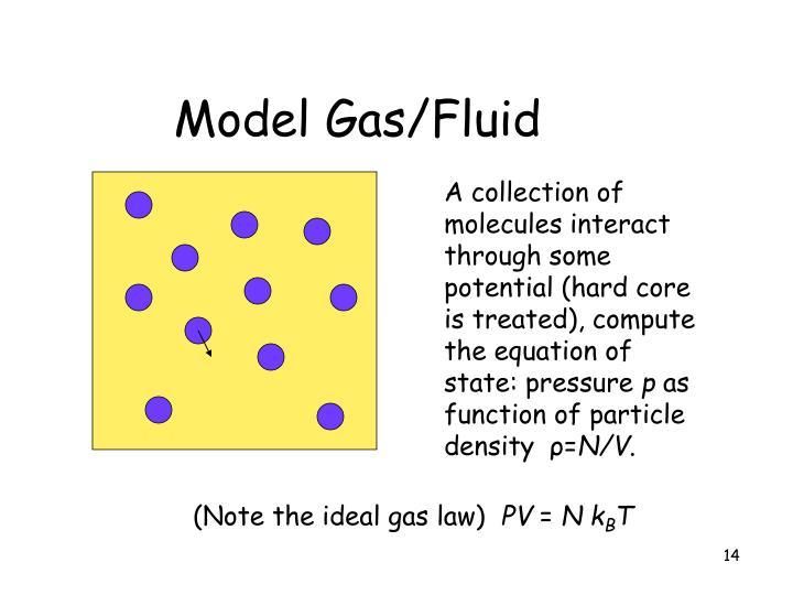 Model Gas/Fluid