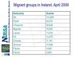 migrant groups in ireland april 2006