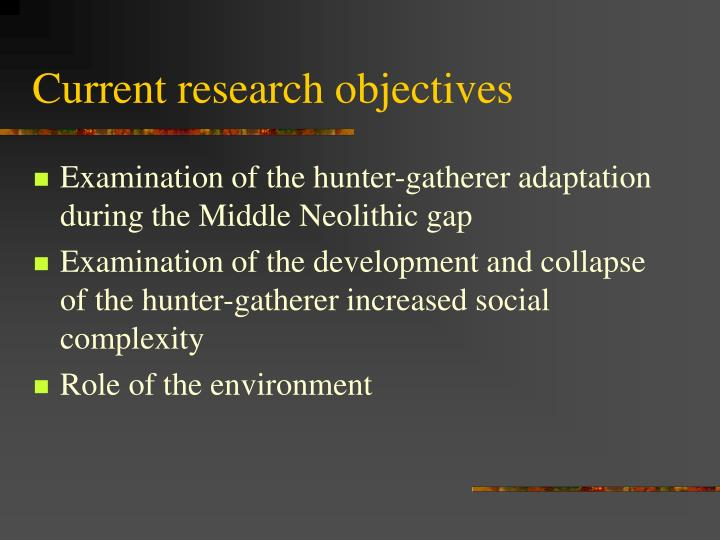 Current research objectives