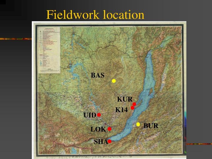 Fieldwork location