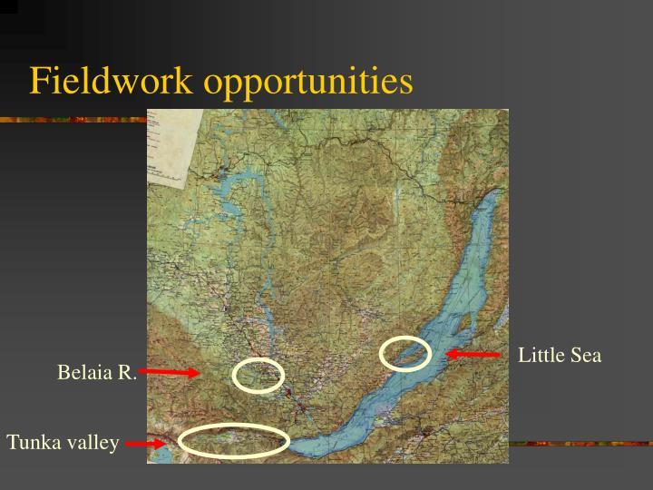 Fieldwork opportunities