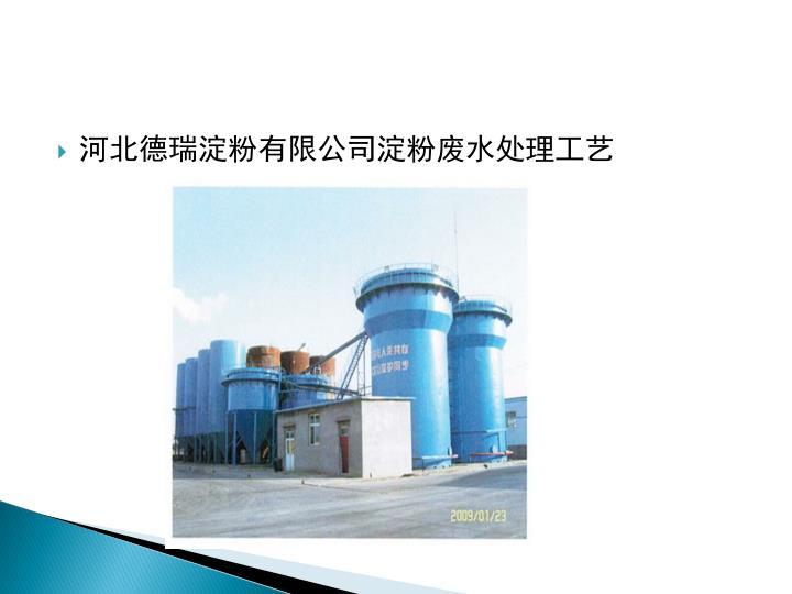 河北德瑞淀粉有限公司淀粉废水处理工艺
