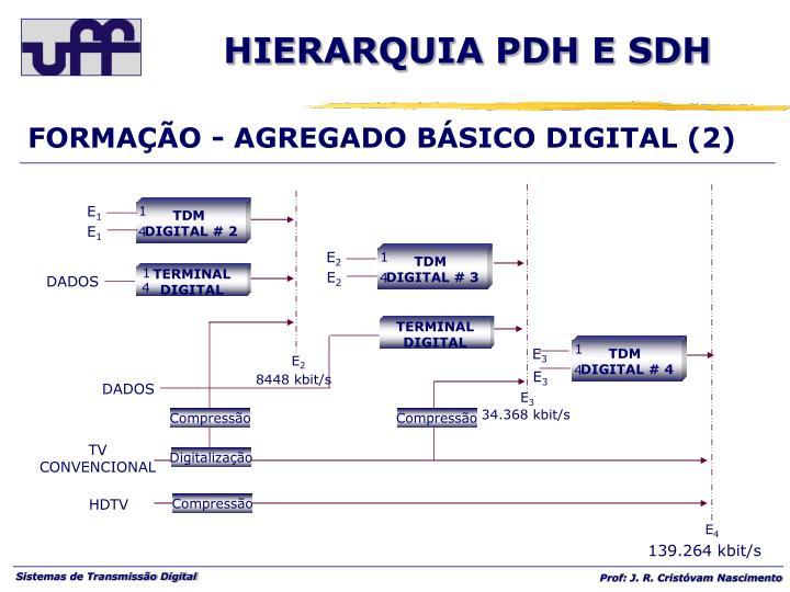 FORMAÇÃO - AGREGADO BÁSICO DIGITAL (2)