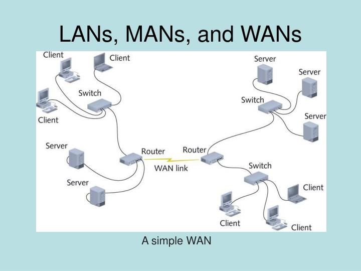 LANs, MANs, and WANs