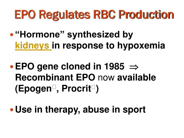 EPO Regulates RBC Production