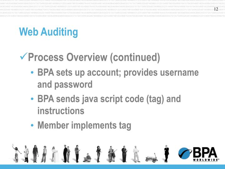 Web Auditing