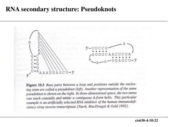 RNA secondary structure: Pseudoknots
