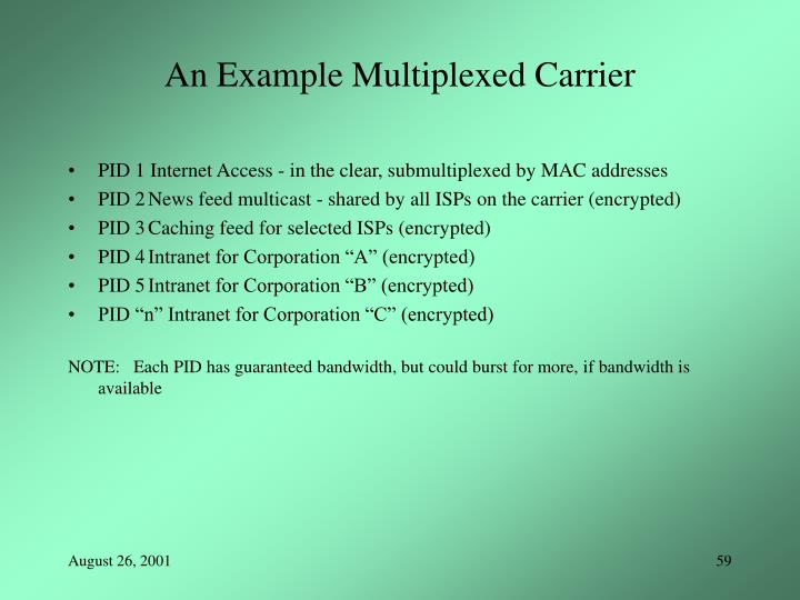 An Example Multiplexed Carrier