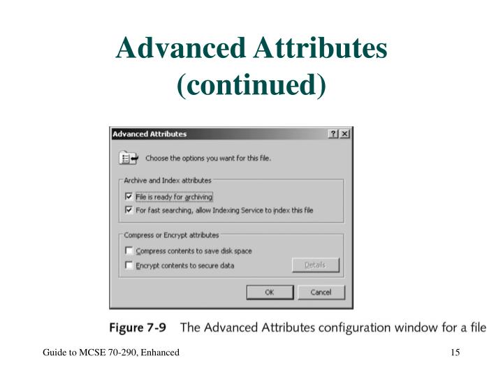 Advanced Attributes (continued)