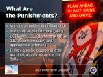 what are the punishments