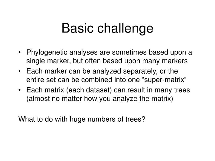 Basic challenge