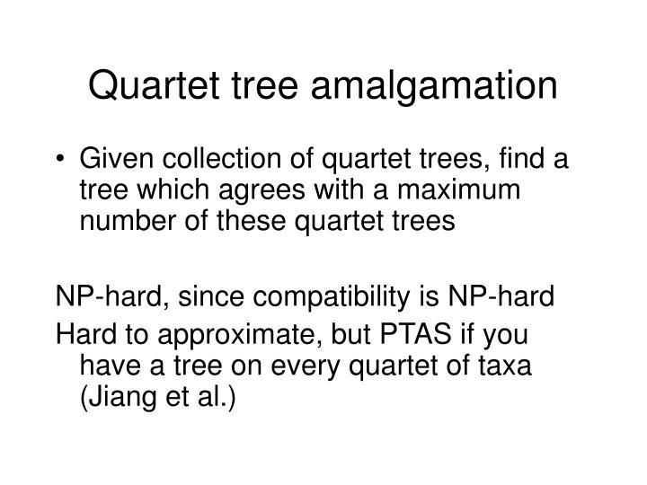 Quartet tree amalgamation