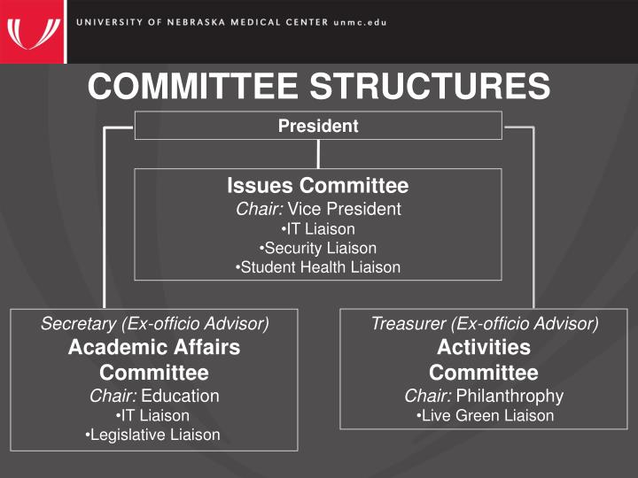 COMMITTEE STRUCTURES