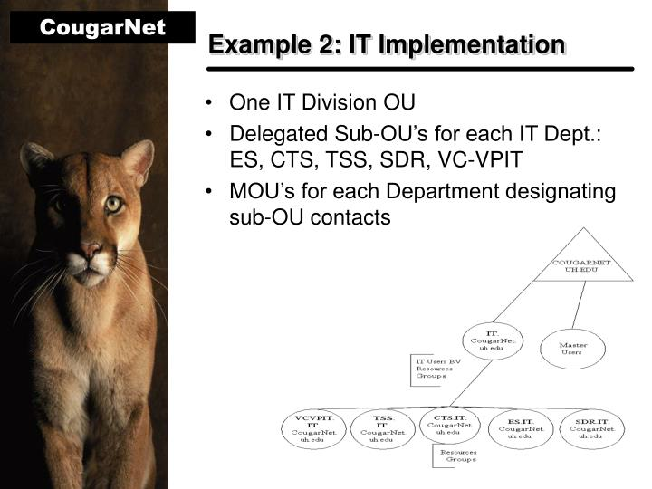 Example 2: IT Implementation