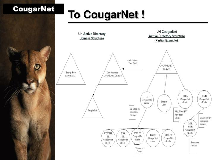 To CougarNet !