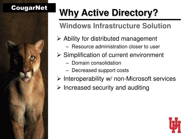 Why Active Directory?
