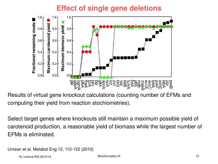 Effect of single gene deletions