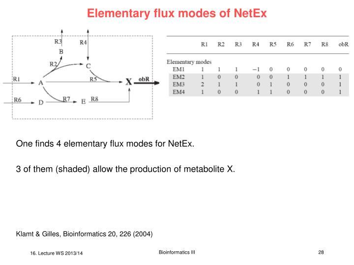Elementary flux modes of NetEx