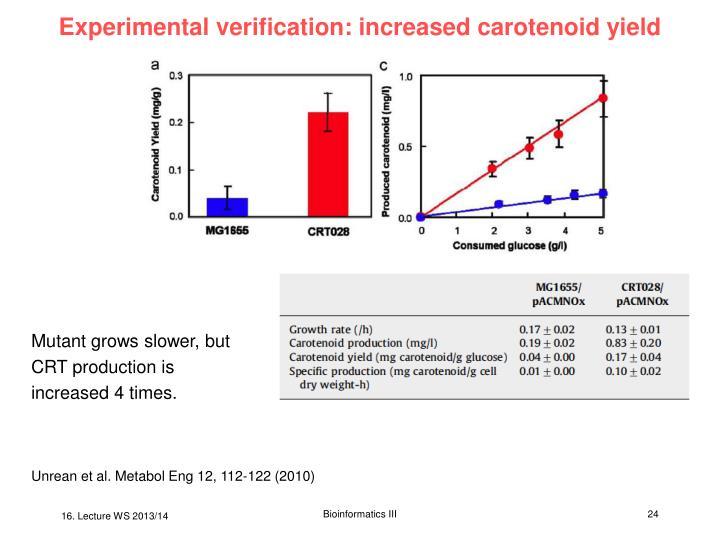 Experimental verification: increased carotenoid yield