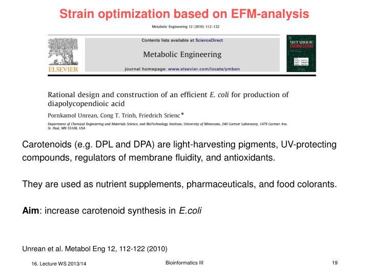 Strain optimization based on EFM-analysis