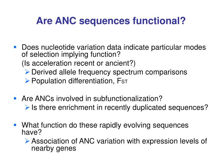 Are ANC sequences functional?
