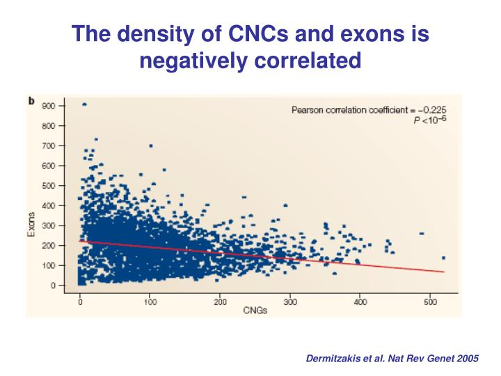 The density of CNCs and exons is negatively correlated