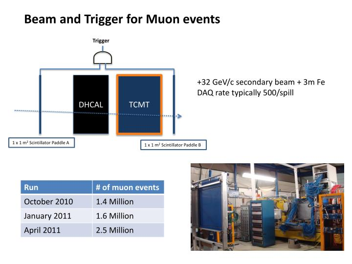Beam and Trigger for Muon events