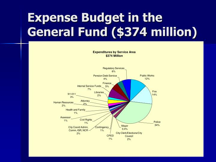 Expense Budget in the General Fund ($374 million)
