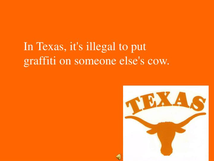In Texas, it's illegal to put graffiti on someone else's cow.