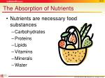 the absorption of nutrients