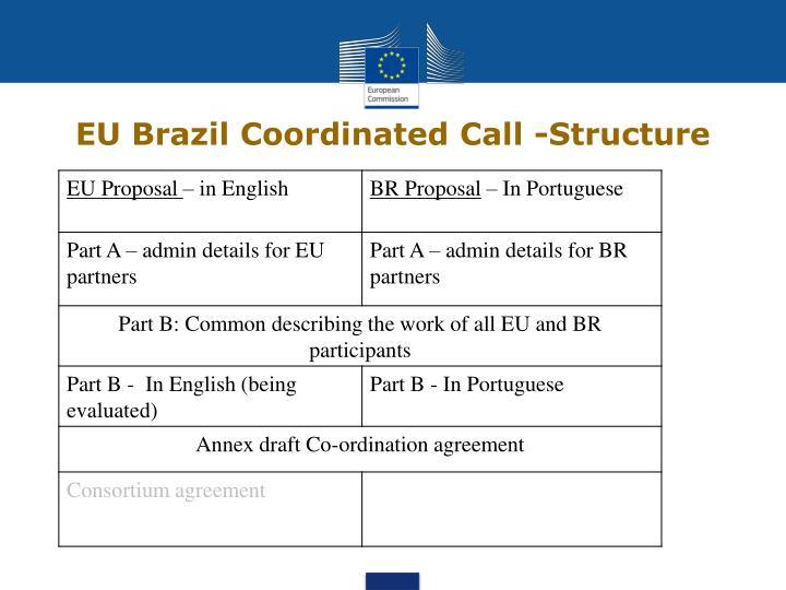 EU Brazil Coordinated Call -Structure