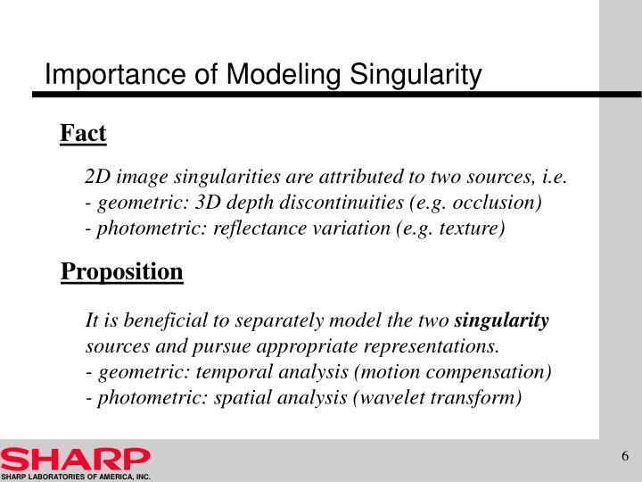 Importance of Modeling Singularity