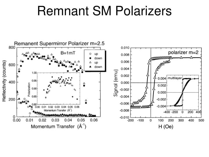 Remnant SM Polarizers