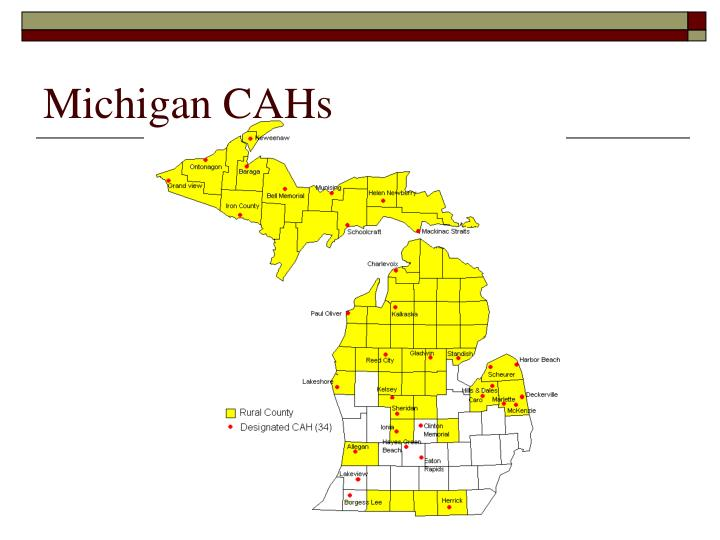 Michigan CAHs