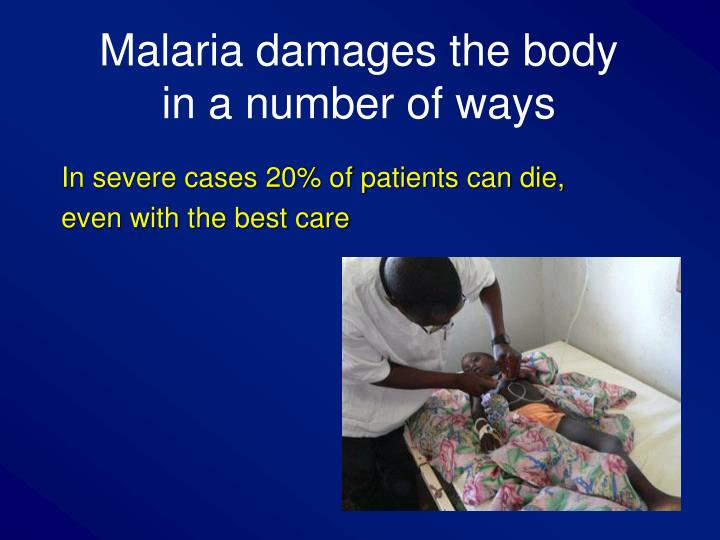 Malaria damages the body