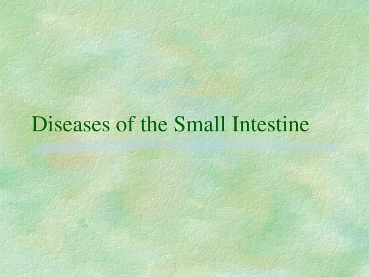 Diseases of the Small Intestine